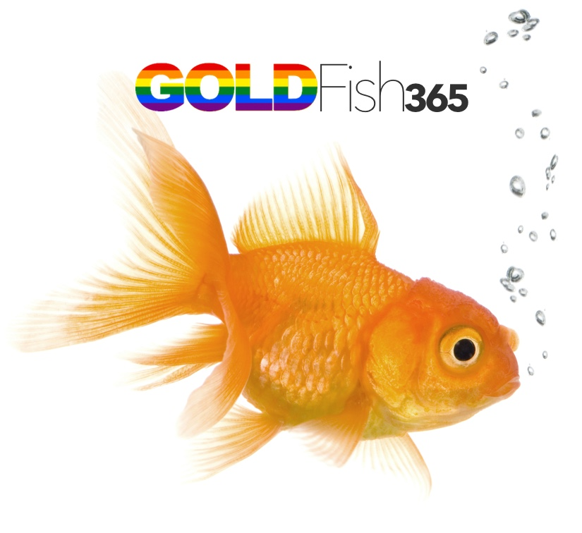 GoldFish Audio cover