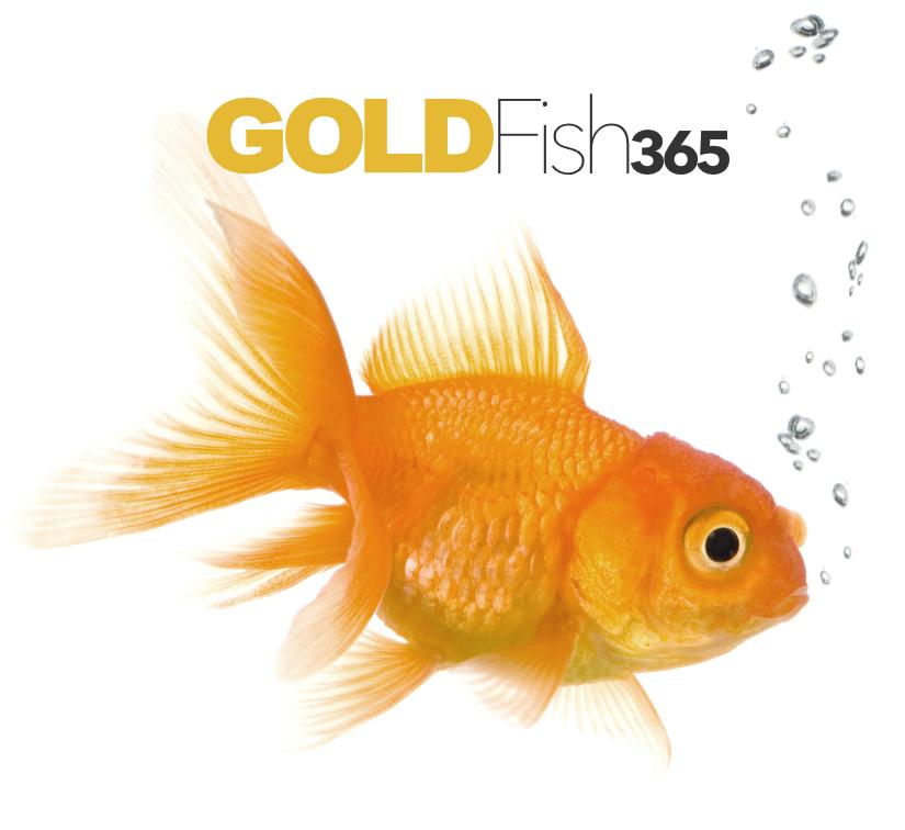 GoldFish365 Logo