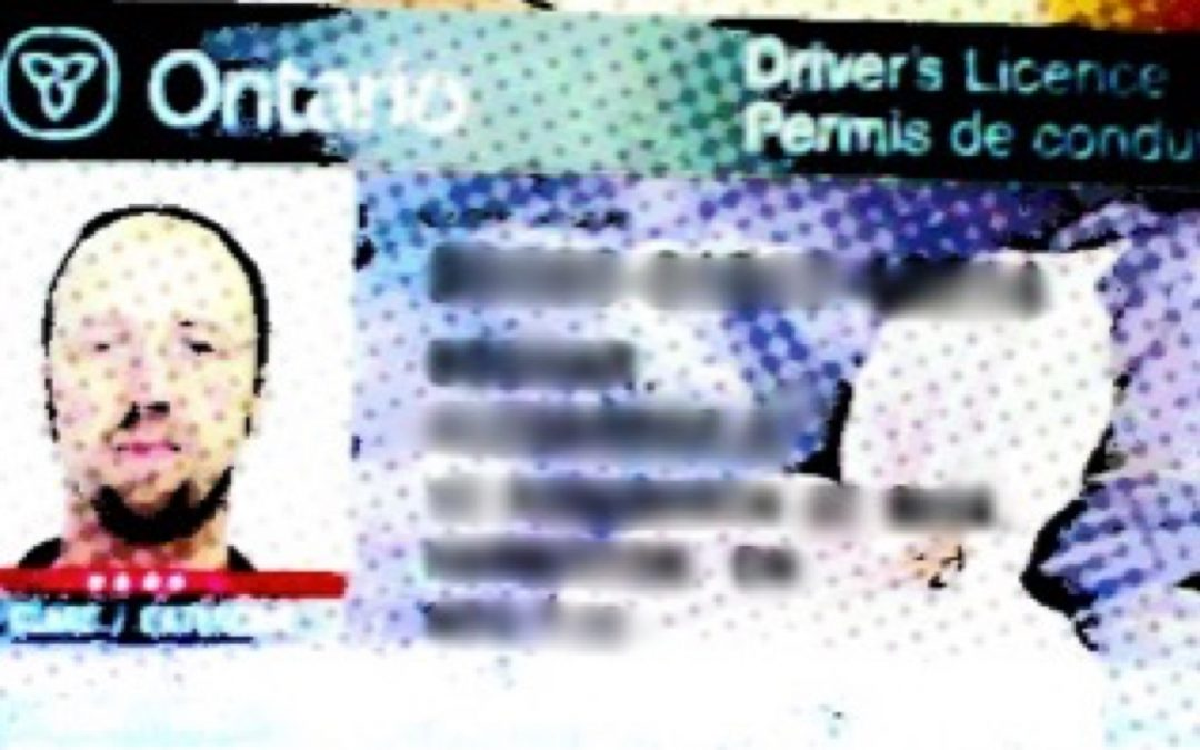 Driver's Licence 2