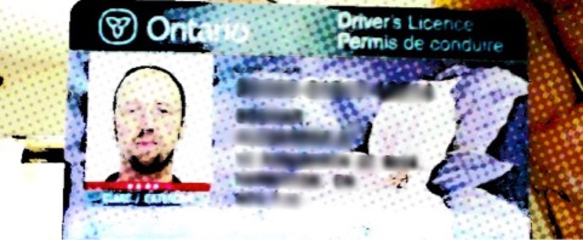 Driver's License 2 Image