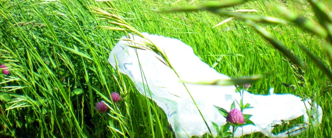 Plastic Bags 2