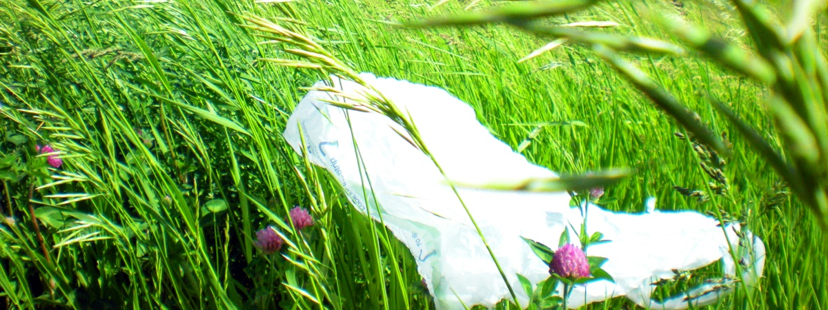 Plastic Bags 2 Image